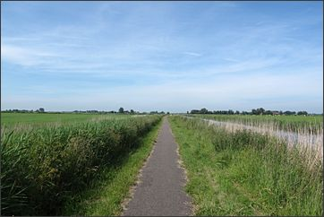 vlak landschap in Friesland